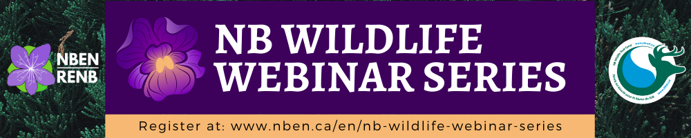 Banner NB Wildlife Webinar Series w link
