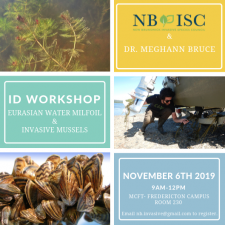 NBISC ID Workshop.png